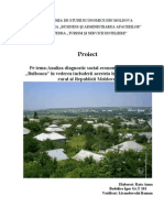 Proiect turistica Bulboaca