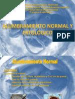 Alumbramiento Normal y Patologico Diapositivas