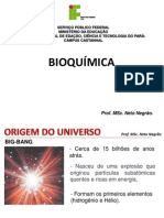 Aula 1 -Bioquímica