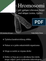 SEMINARSKI - prezentacija (HROMOSOMI)