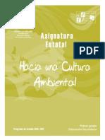 Hacia Una Cultura Ambiental