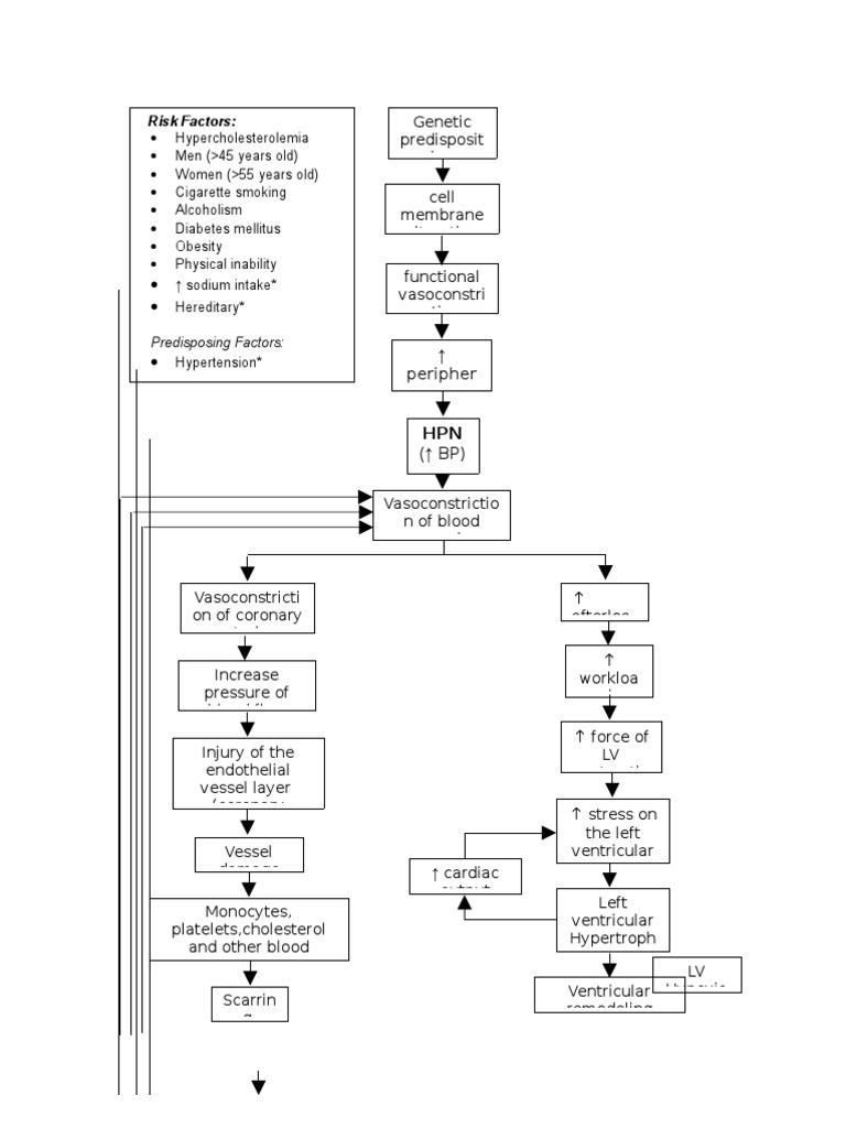 Pathophysiology Diagram of Congestive Heart Failure ...