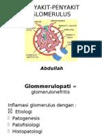 Penyakit Penyakit Glomerulus