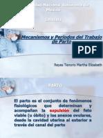 Mecanismos Periodos y Trabajo de Parto