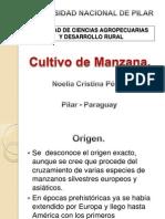 Tp Manzano Completo