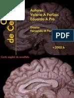 CORTES DE CEREBRO. Forlizzi, Pró. Universidad de Buenos Aires