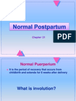PP_normpp
