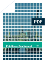 ptb_07_petroleo.pdf