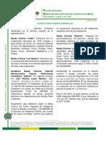 ACRIT 061 - Estructuras BACRIM[1].pdf