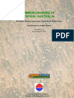 Common Grasses of Central Australia