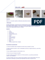 Detecção do amido em folhas verdes
