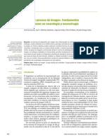 Análisis y proceso de imagen. Fundamentos y aplicaciones en neurología y neurocirugía
