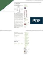 Blog Ringgo Doank_ Struktur Organisasi Perusahaan IT