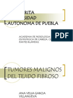 Tumores Malignos de Tejido Fibroso