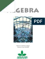 Álgebra - Arrayán Editores