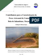 Santos, R. 2004 - Caracterização da Pesca Artesanal de Camarão na Baía de I'bane