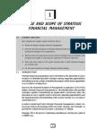 Strategic Financial Management (2)