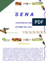Analisis fisico y sensorial de Cafe, Cafe Vida.ppt