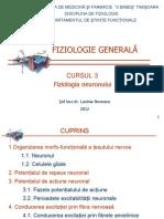 Fiziologie Neuron