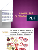 Anomalías cromosomicas