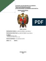 CRITERIOS DE CLASIFICACIÓN DE LAS HOJAS