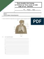 Ficha de Trabalho_6_Sistema respiratório