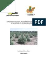 Experiencias y Manual Para La Produccion de Arboles de Navidad Jalisco.