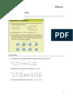 Sol MatII Tema1 Matrices