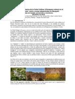 InformePNL-caña-floracion2012.pdf