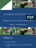 CRIAÇAO DE BEZERRAS