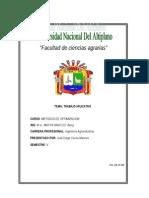 Metodos de Optimizacion - Truchas Arco Iris (MINIMIZACION de COSTOS)
