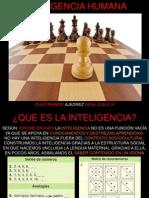 inteligenciaslideshare-100413165606-phpapp02