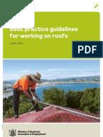 Roofs Best Practice