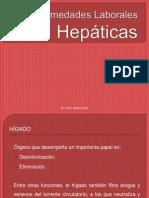 3 - Hepaticas