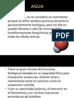 MACROMOLÉCULAS DE LOS ALIMENTOS