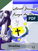 Directiva 2013.docx