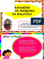 Managing Flood Problems