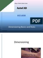 EG1430 - 6.0 Dim Basics and Rules (Reading Home)