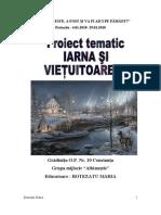 0botezatu_proiect_3_