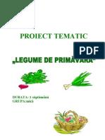 55proiecttematic