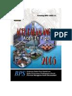 Aceh DalAm Angka 2005