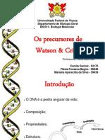 Histórico de biologia molecular 23-03-2013