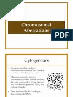 Chromosomal Abberations