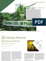 Proyecto Cultivo Report Elorriaga