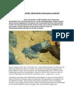 Fossilien aus dem Feuerball- Außerirdische Lebensspuren entdeckt