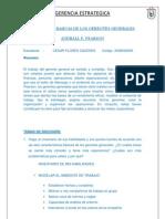 Universidad Privada de Tacna-caso
