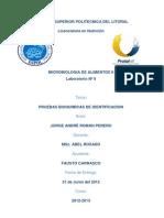 informe9-120808051203-phpapp02