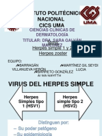 Herpes Simple,Varicela, Zoster Equipo 4