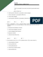 AEF 2,CIG Teorie, Multilple Chois(2010)