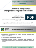 Abastecimento e segurança energética na Região do Cone Sul